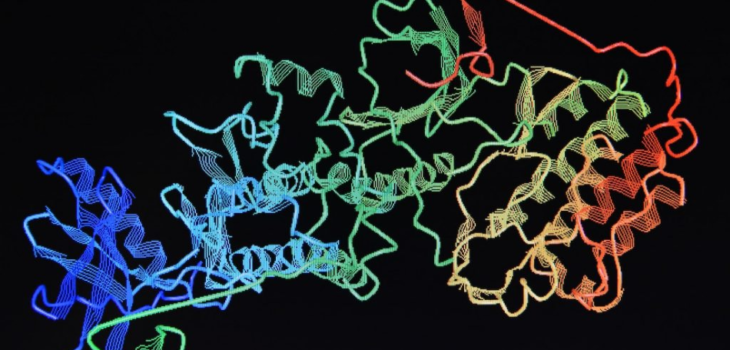 WHY IS PROTEIN CHARACTERIZATION IMPORTANT