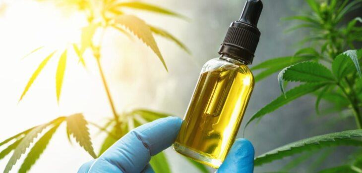 CBD Oil Products Have Benefits You Never Have Imagined