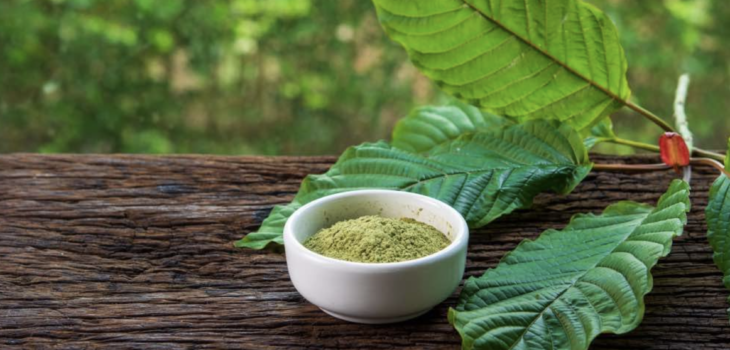 What are the 10 Most Popular Strains of Kratom
