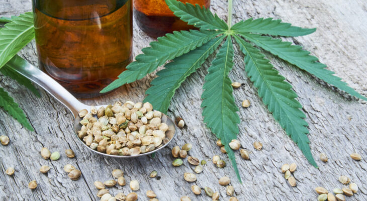 What do you need to know more about CBD oil?