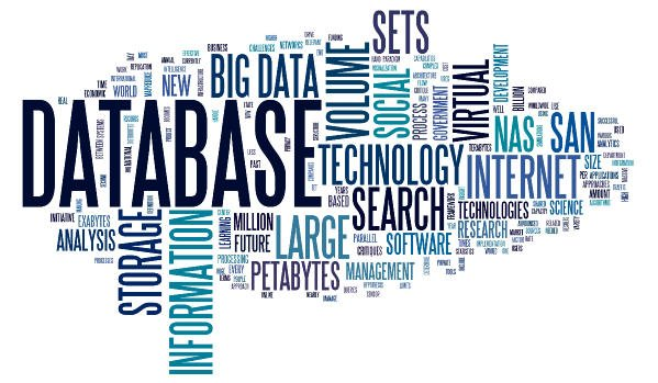 Why are business databases a must for every business