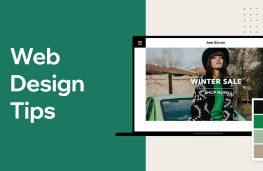 What are the tips for designing an affordable and attractive website