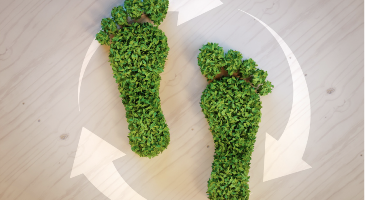5 Tips That Will Help Eco-Friendly Brands Thrive