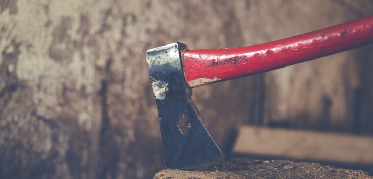 The Little-Known Advantages of Using a Double-Bit Axe