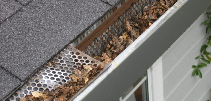 Why You Should Hire A Professional To Clean Your Gutters