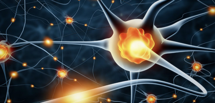 Neurogenesis: Importance and Factors of Influence