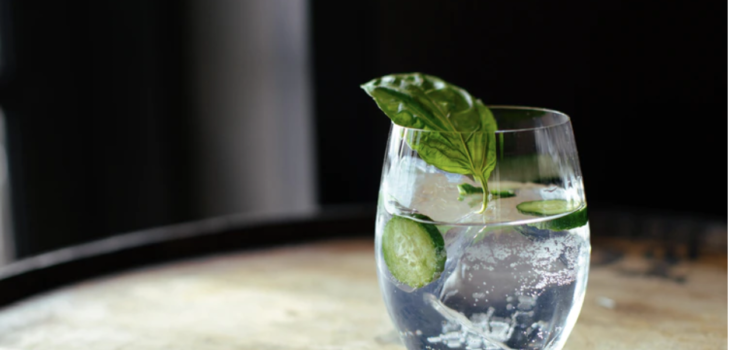 Understanding Flavoured Gin – What Flavours of gin are there