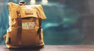 5 Reasons that Motivate You to Use a Vegan Backpack