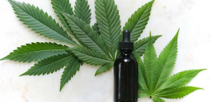Top 6 Benefits of Consuming CBD Oil for Your Health