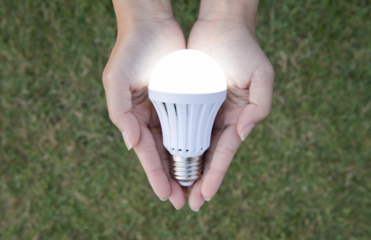 Go Green: 5 Green Solutions You Will Love in Your Home